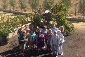 Tres Valles Wine Tour